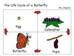 Vessels Ministry The Life Cycle